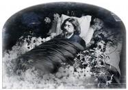 Alphonse Daudet, portrait de la collection Félicien Marboeuf. Œuvre d'Alain Rivière, artiste plasticien.