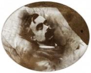Léon Bloy, portrait de la collection Félicien Marboeuf. Œuvre d'Alain Rivière, artiste.
