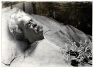 Mark Twain, portrait de la collection Félicien Marboeuf. Œuvre d'Alain Rivière, artiste.